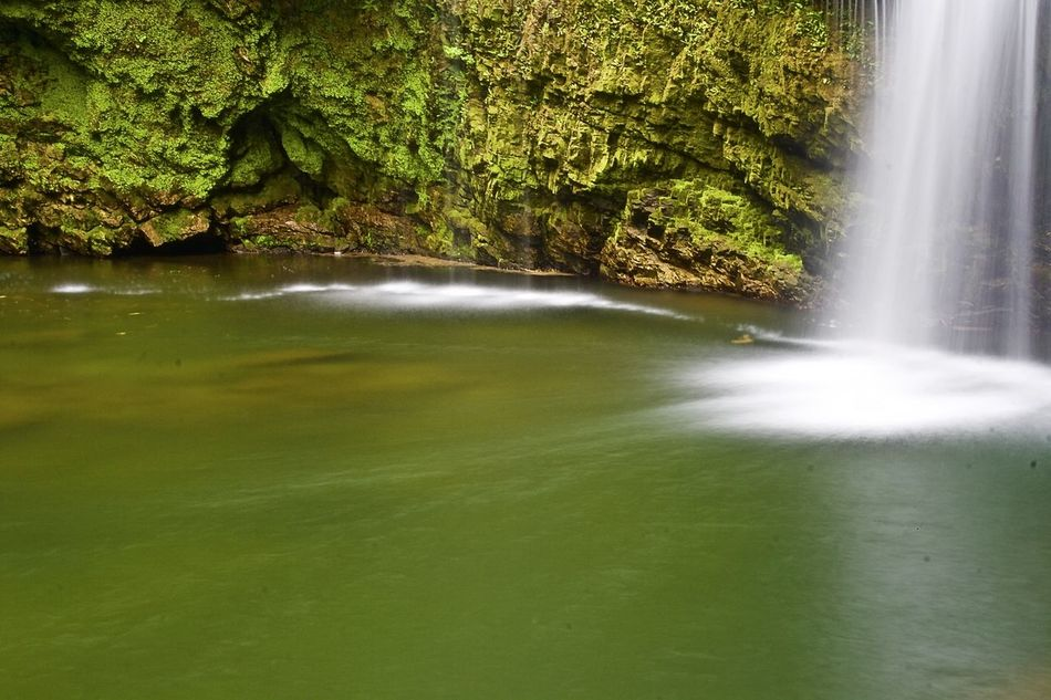 Canon1000d Day Flowing Flowing Water Free Sunday Green Green Color Growth Idyllic Long Exposure Motion Nature No People Outdoors Panoramic Panoramic Photography Plant Scenics Tranquil Scene Tranquility Water Waterfall Woods