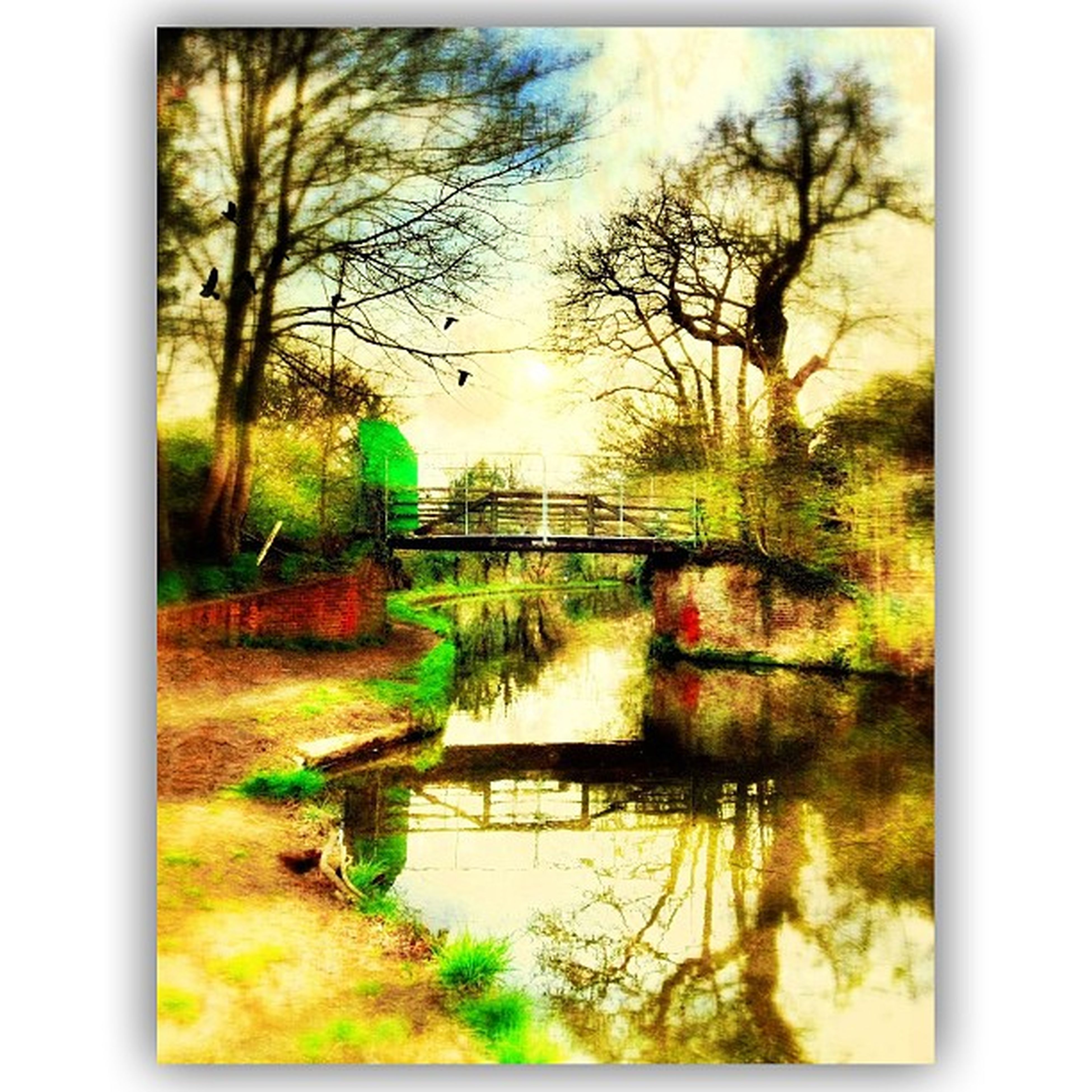 transfer print, tree, auto post production filter, water, tranquility, tranquil scene, reflection, lake, branch, scenics, nature, beauty in nature, growth, bare tree, sky, grass, river, plant, landscape, idyllic