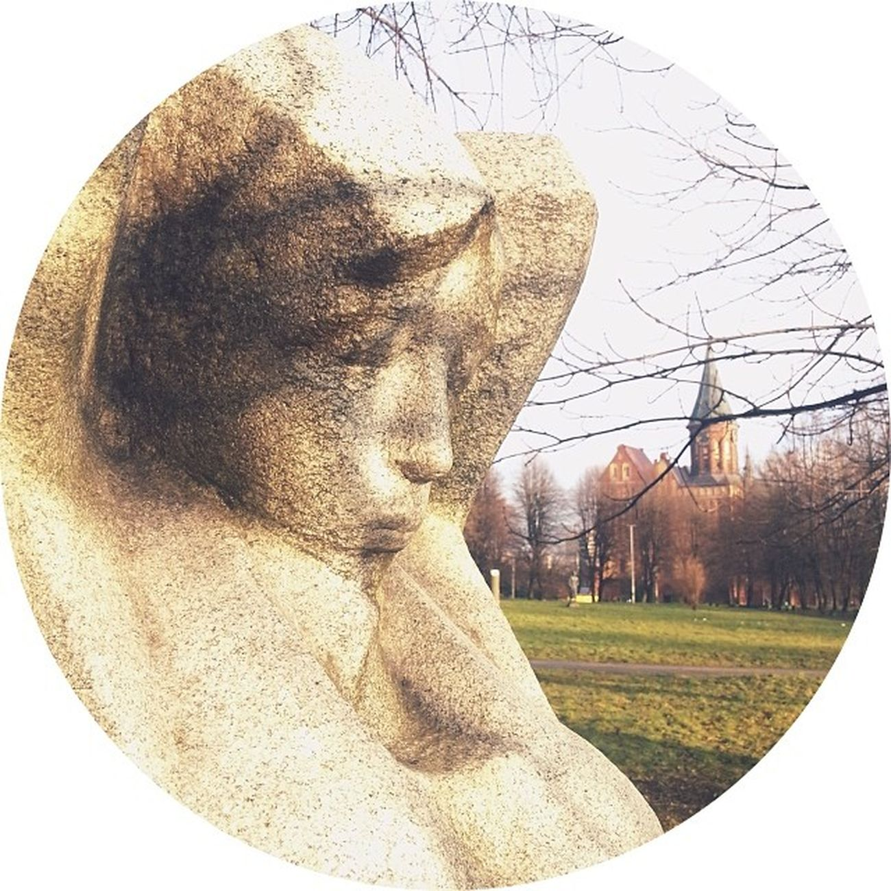 островканта скульптура парк прогулка Калининград зима2013