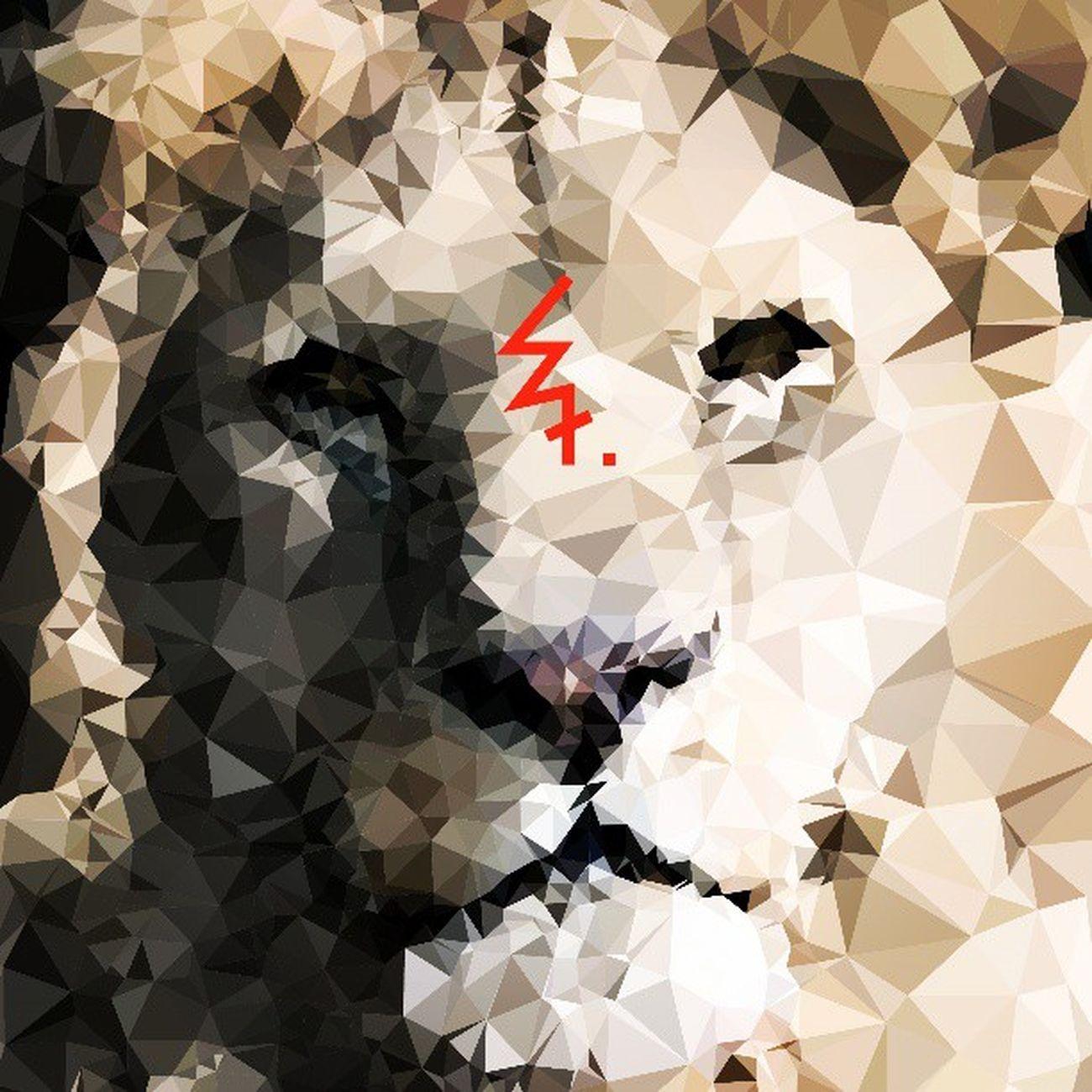 Leo Leo Lion Graphicdesiner Graphic Graphicdesign Geometric Geometry Illustrator Illustration Illustrate Art Communication SSRU Suansunandha Thaigraphic Iamthaigraphicdesigner Instaphoto Insta_thailand Thaistagram Adayinthailand Bangkok Seeyoutomorrow