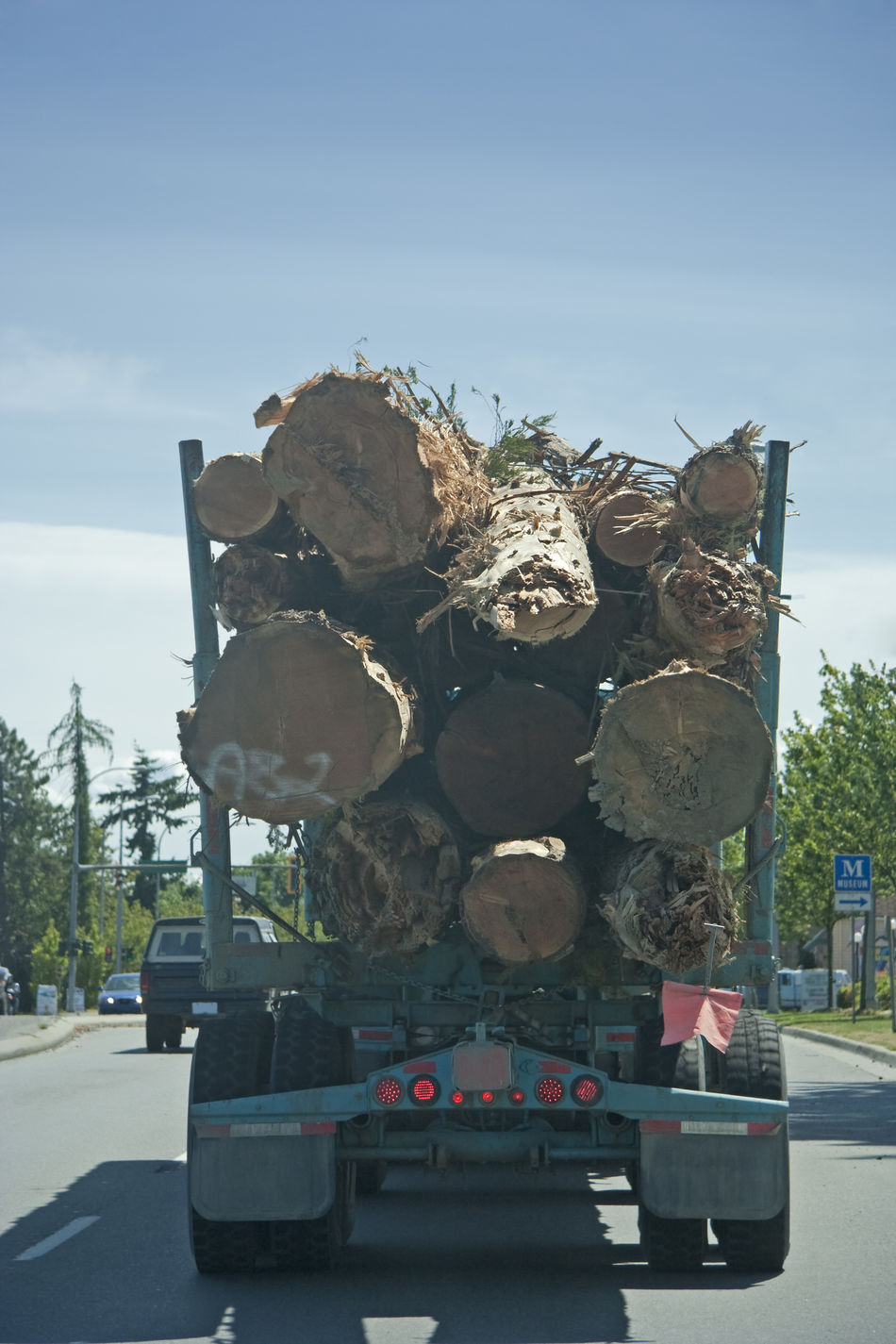 Truck in Motion carrying a Load of Logs - Vancouver Island, British Columbia, Canada British Columbia Canada Dead Tree Deforestation Driving Environment Environmental Issues Fallen Tree Freight Transportation Highway Highways&Freeways Lumber Industry Lumberjack Mode Of Transport No People Rear View Road Semi-truck Stack Timber Traffic Transportation Tree Tree Trunk Truck