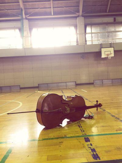Cello in the gymnasium Travelingfoot Cello Primaryschool Primary School Japan Concert