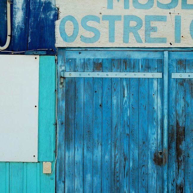 Cabane ostréicole Saintrojanlesbains Charantemaritime Oleron Cabanesostreicoles bleu