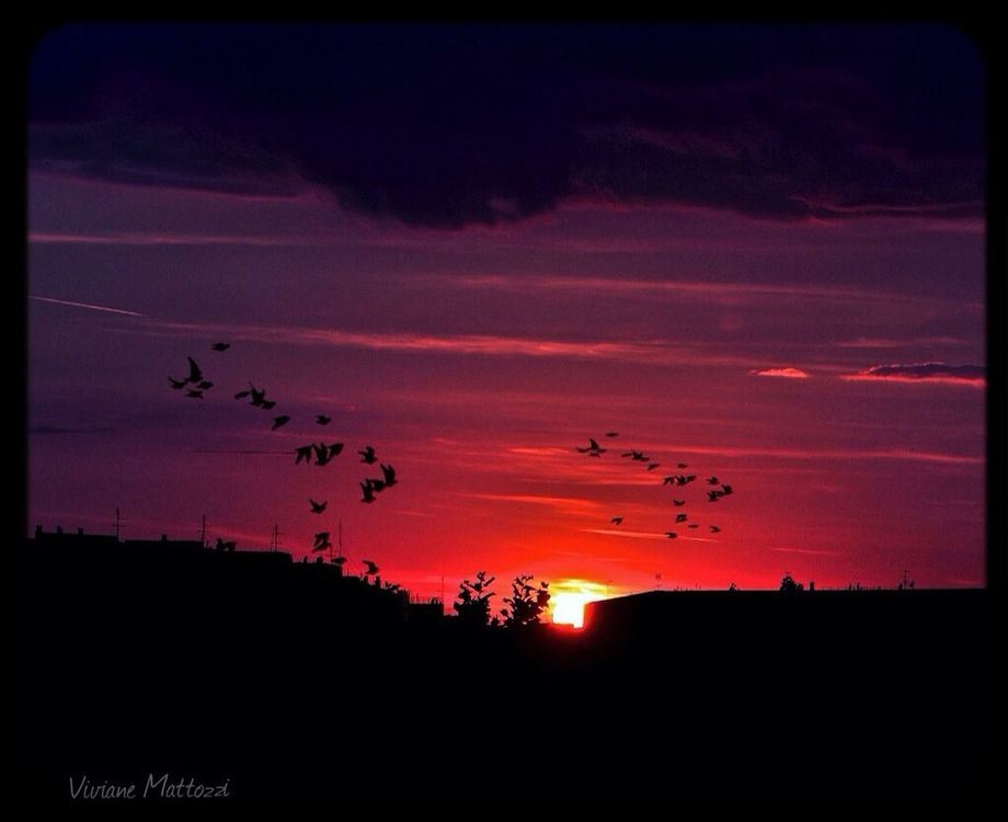 RomanticSunset at Roma-Italy by Ⓥⓘⓥⓘⓐⓝⓔ Ⓜⓐⓣⓣⓞⓩⓩⓘ