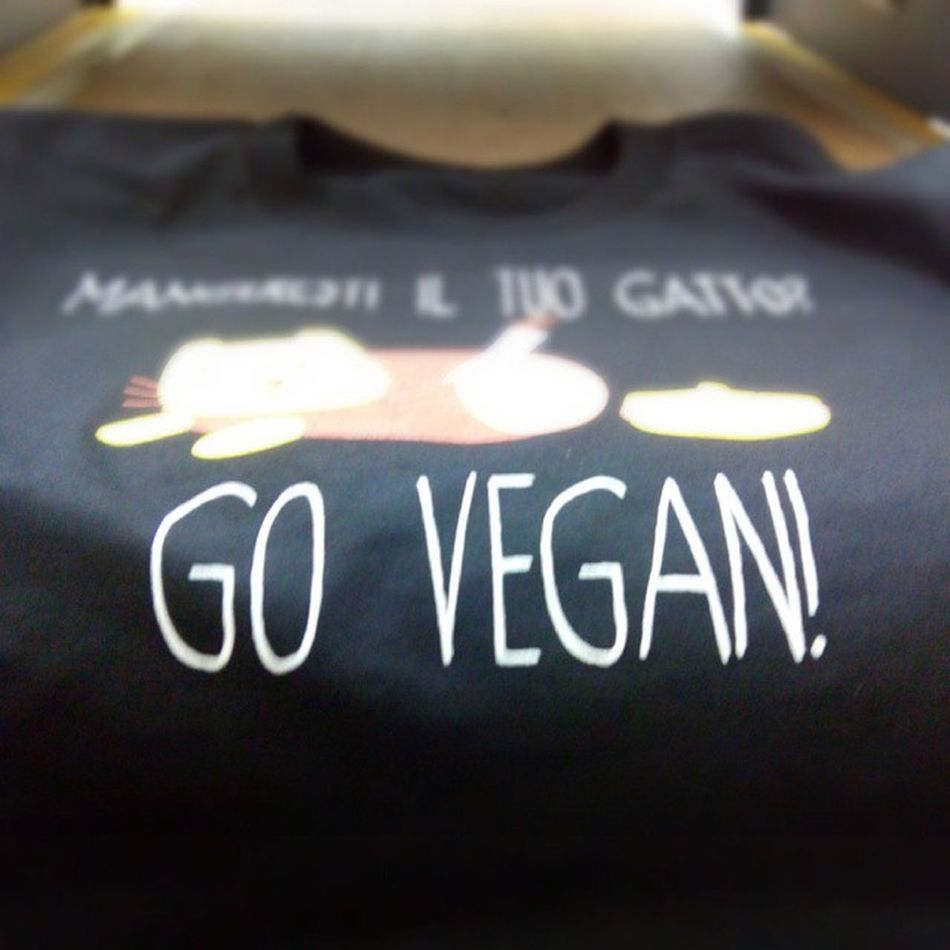 #chiaralascura #vegantshirt #vegan #cat #gatto #maglia #antispeciesism #antispecismo Cat Vegan Gatto Maglia Chiaralascura Vegantshirt Antispeciesism Antispecismo