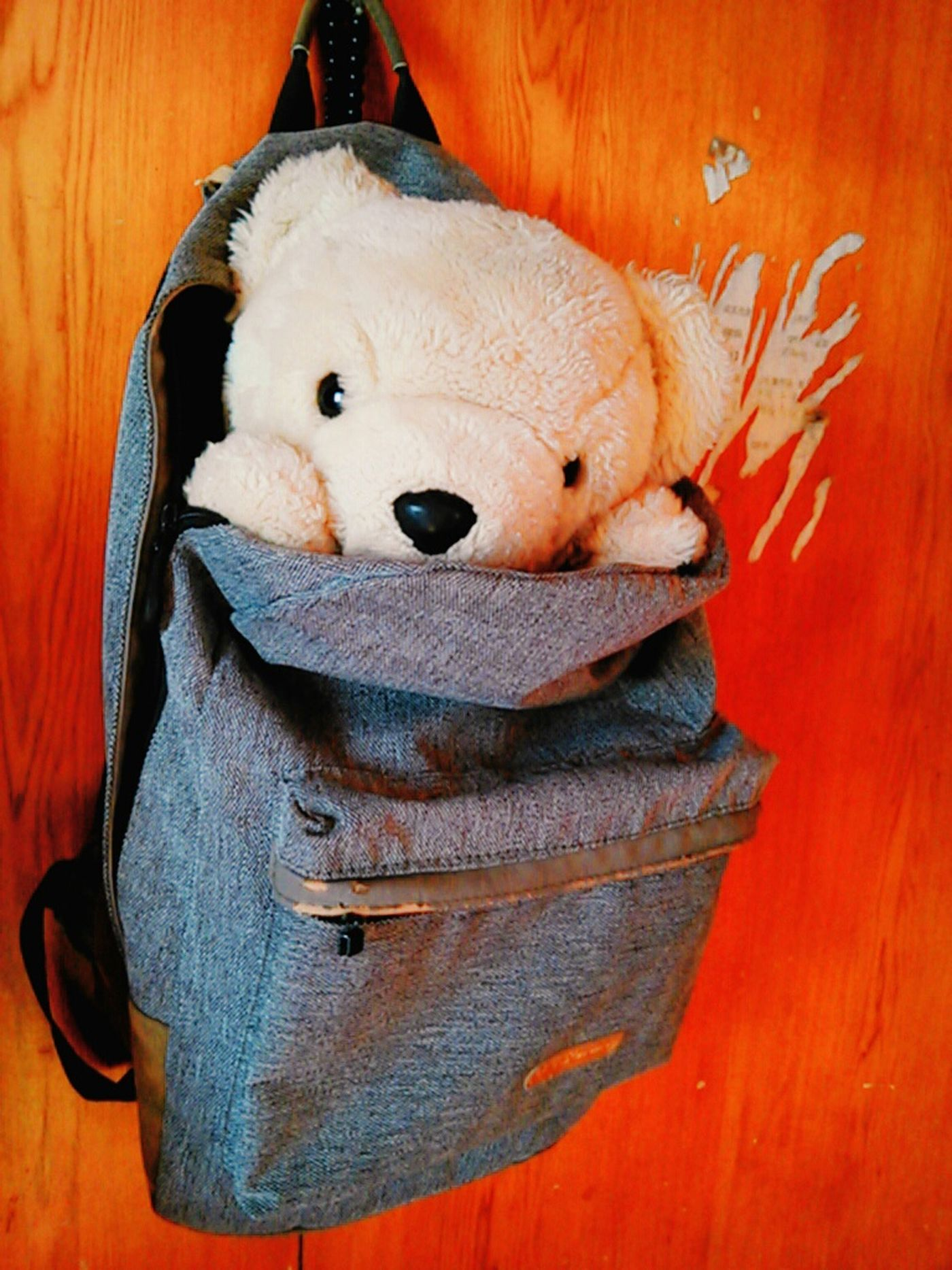 a backpack that can bring me a journey is a good backpack. A_Ruang Bear Cute Doll Backpack Journey Slemder