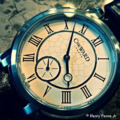 A Christmas gift from me to my Island Girl Macro Watches Timepiece Timepieces Swissmade Swiss Made Watch Panasonic  Panasonic Lumix