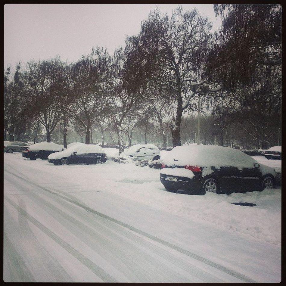 Még mindig tél. :-( Ho Március Tavasz Snow March Spring