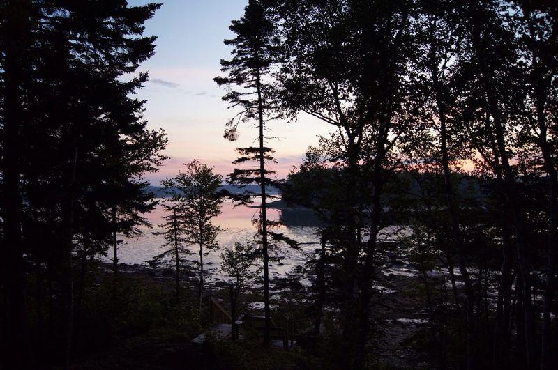 Sunrise Landscape Nature Water_collection