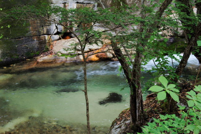 Beauty In Nature Clear Water Emeraldgreen Green Japan Nature Nature Photography Nature_collection River Water エメラルドグリーン 山梨 川 渓谷 瑞牆山 自然 透明