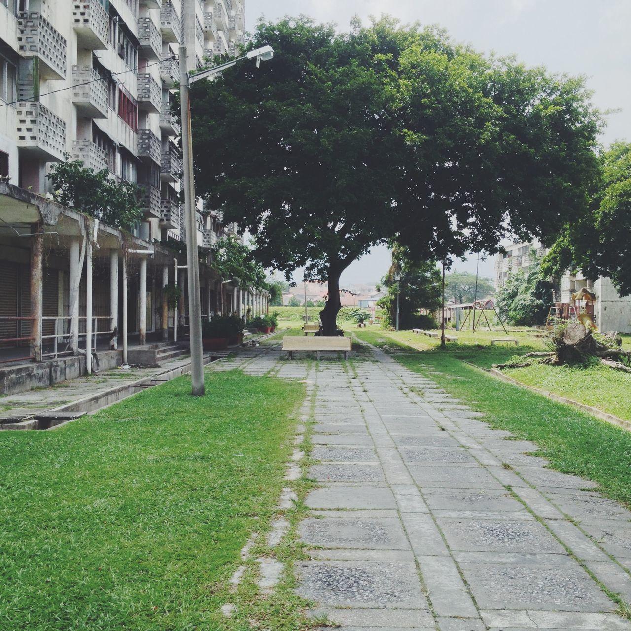 Walkway Street By Building Against Tree
