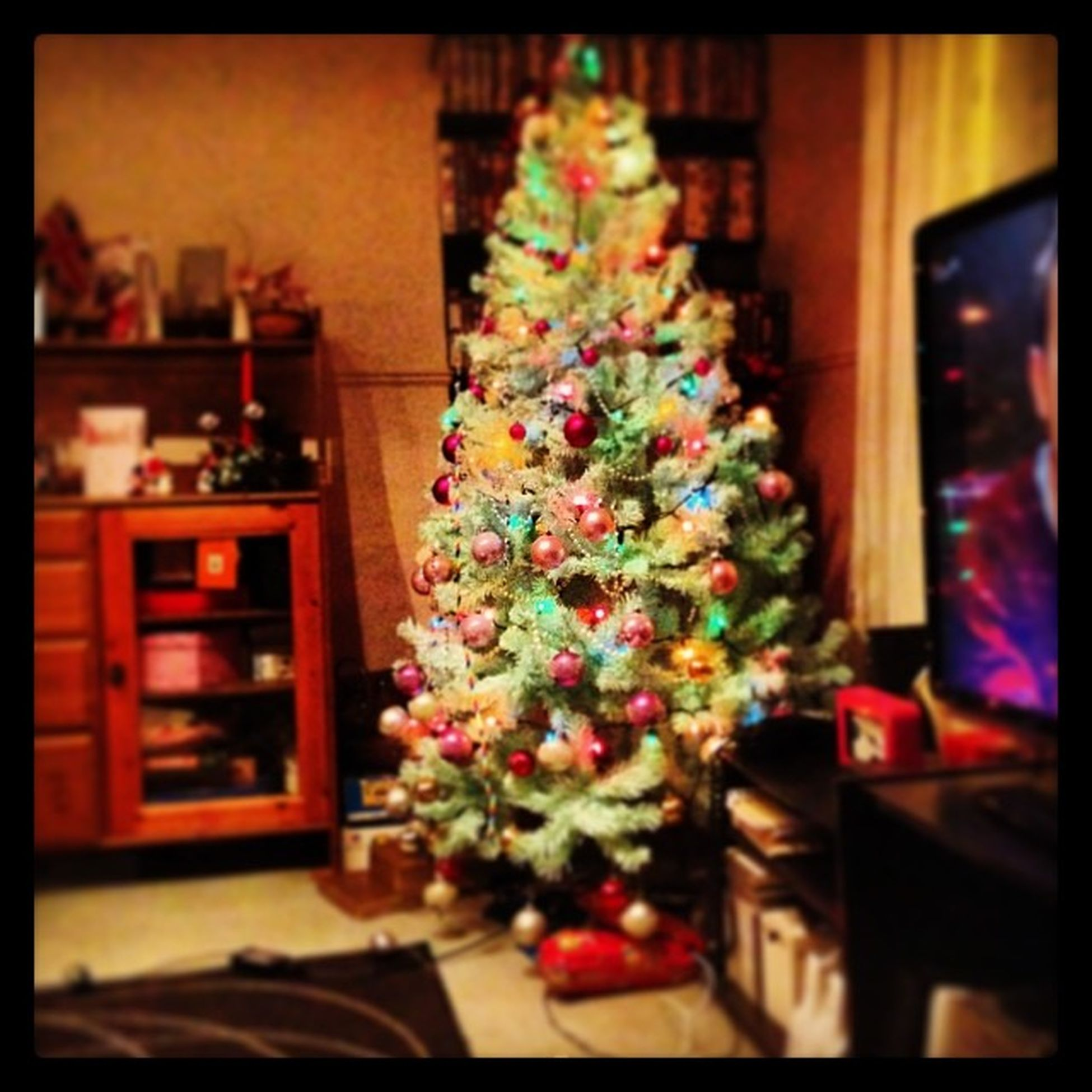 Christmastree Merrycrimbo