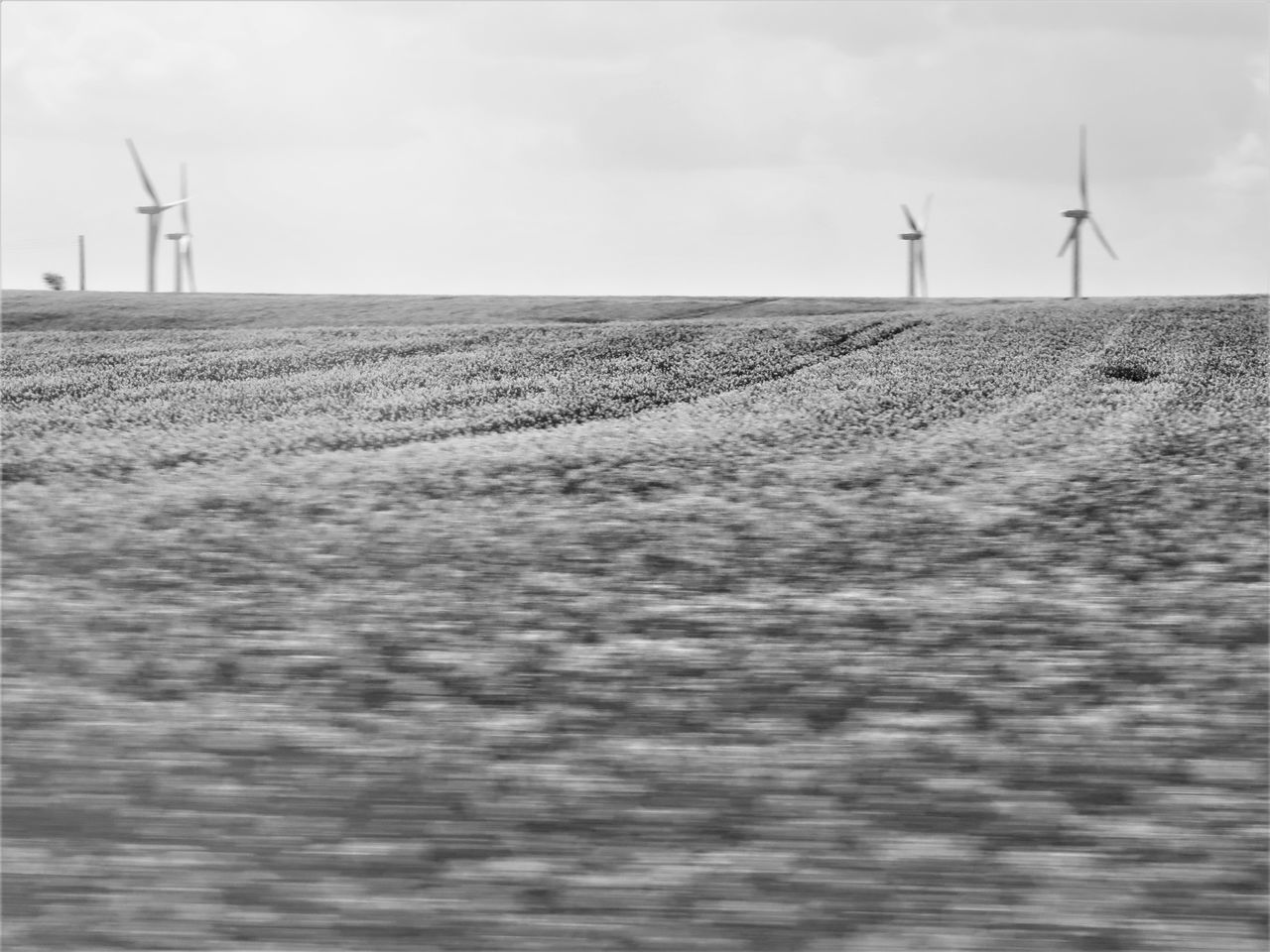 wind turbine, wind power, windmill, alternative energy, environmental conservation, renewable energy, industrial windmill, fuel and power generation, field, sky, landscape, rural scene, day, outdoors, nature, tranquility, agriculture, no people, traditional windmill, scenics, beauty in nature