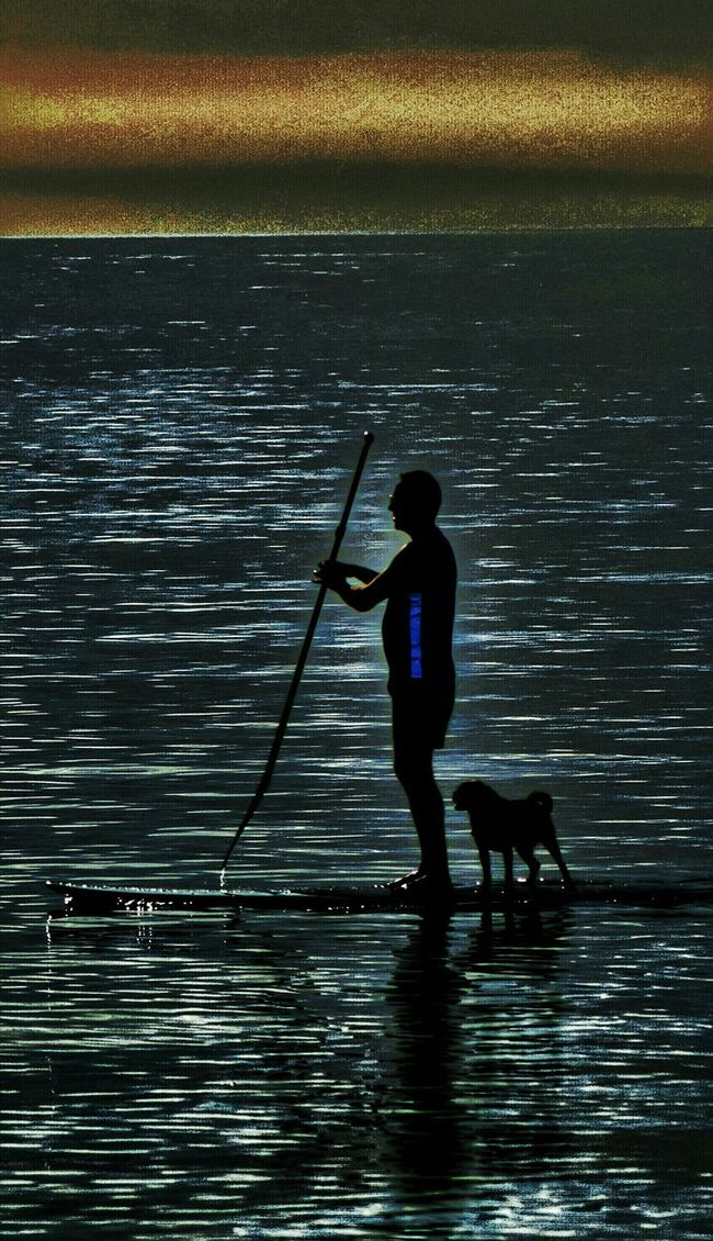 Man and his dog paddle boarding at dusk. Man And Dog Man And Best Friend Paddlboarding Beachphotography At Dusk A Mans Best Friend. Mansbestfriend Petslife Dogslife Dogs Pets Beach Photography Sand & Sea Sandy Beach Sea View Ocean View Eye4photography  Eyeemphotography EyeEm Gallery Eyemphotography Seaside Sea And Sky Life Is A Beach Hanging Out Taking Photos
