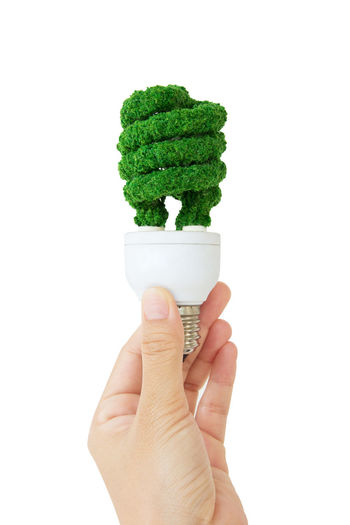 green light bulb concept Earth Hour Isolated Close-up Copy Space Day Eco Energy Eco Friendly Food Food And Drink Freshness Green Color Holding Human Body Part Human Hand Isolated White Background Light Bulb One Person People Power Supply Real People Studio Shot White Background