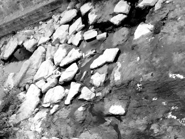 Eyeem River Eyeem Photography Stones & Water Rocks In Water Nature Photography Blackandwhite Photography Eyeem Black And White Photography Taking Photos Water And Nature Water_collection Rocks And Water Little River EyeEm Gallery Water Nature River Rocks Naturephotography Eyeemblack&white Eyeem Black And White Eye4photography  Eye4black&white  Eyeemphotography Blackandwhite Black And White