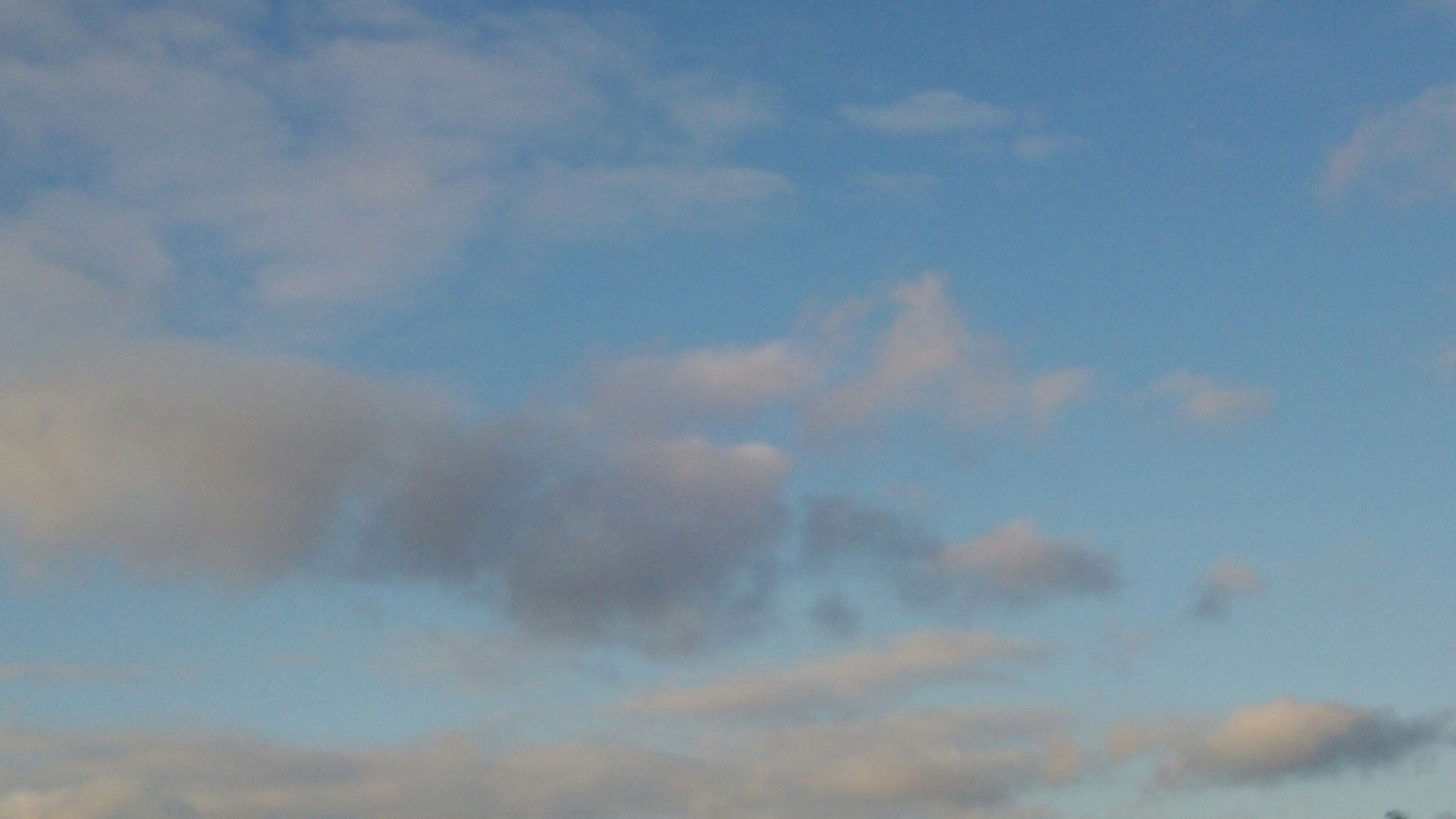 sky, cloud - sky, low angle view, tranquility, beauty in nature, scenics, tranquil scene, nature, cloudy, blue, cloud, idyllic, backgrounds, outdoors, no people, day, full frame, cloudscape, sky only, weather