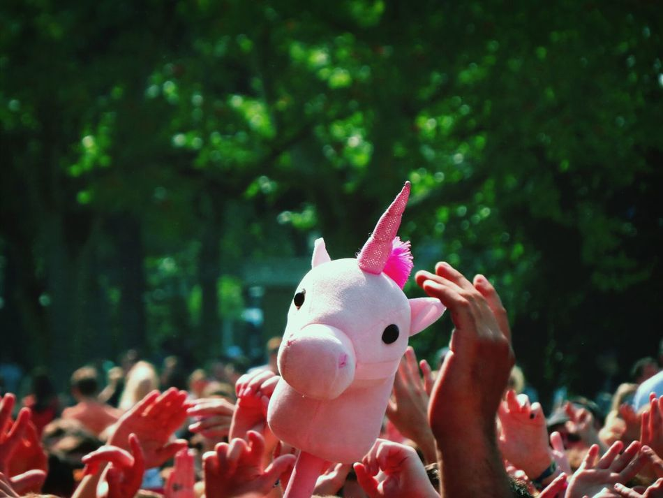 Beautiful stock photos of unicorn, Day, Large Group Of People, Outdoors, Pink Color