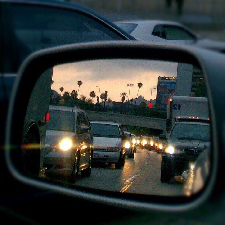 Palmtrees vs. Traffic ... LiveanddirectfromLosAngeles Photooftheday Jj  Losangeles From My Point Of View Reflection Mirror