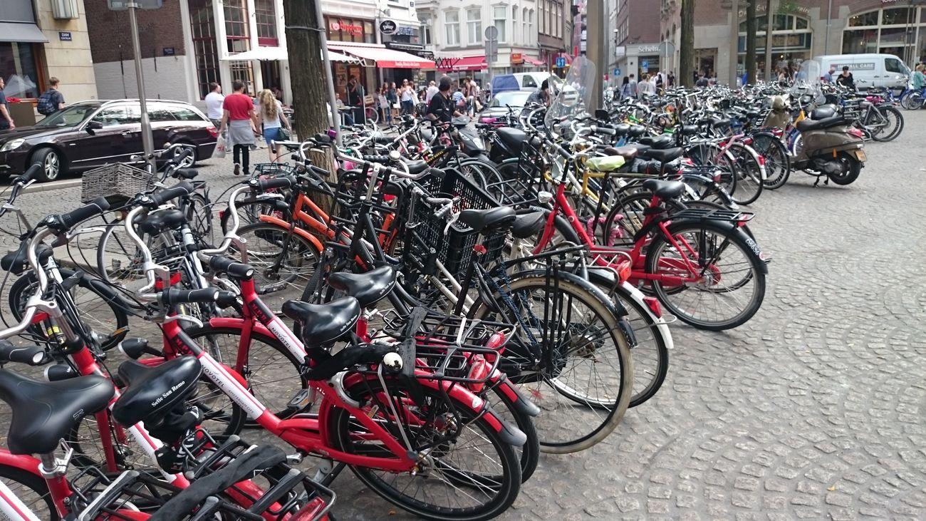 Mirar cuantas Bicicletas hay en Amsterdam Holanda