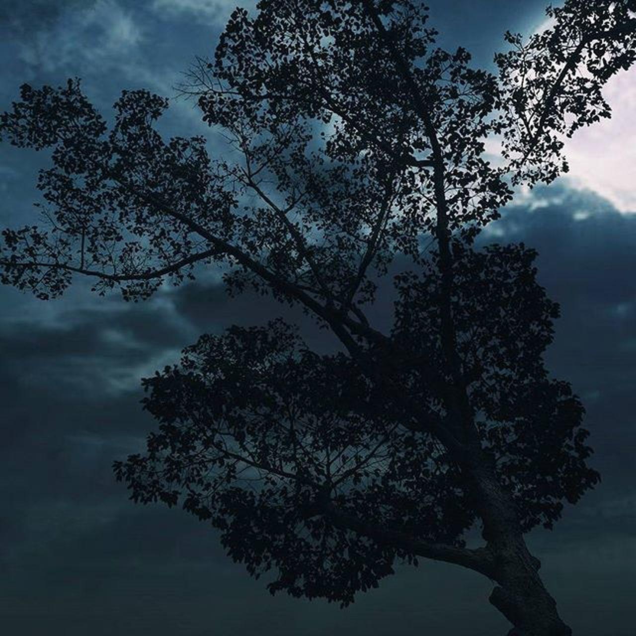 moonlight . . . . Sky CreateExplore Explore Night INDONESIA Photodirect Moodygram Moodygrams Beautyful