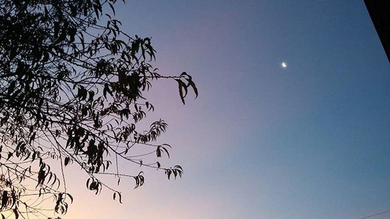 welcome fall 💛🌪🌬🍁🍂🌙 Sky Moon Fall Nofilter Snap: oliveirataianna Suasfotografiasb Suafotografiaaq Vscofotografia_ Gradefotografica Fotografiaks