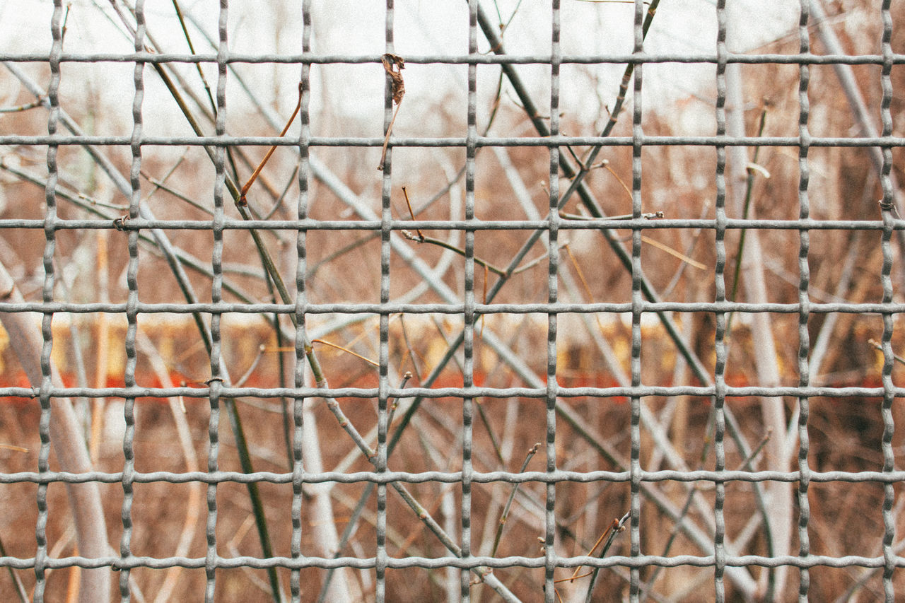Fenced Ringbahn. Berlin Berlin Photography Berliner Ansichten Bokeh Branch Branches Bvg Close-up Day Fence Focus On Foreground Minimalism Nature No People Outdoors Prenzlauerberg Sbahn Streetphotography Symmetry Urban