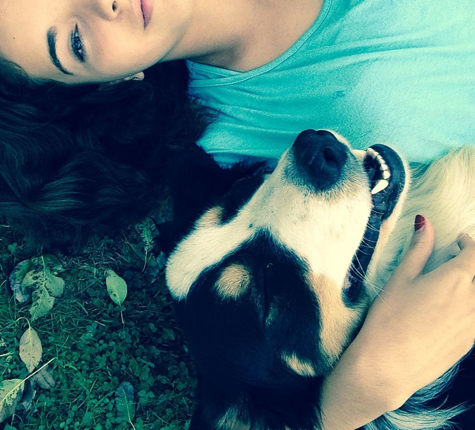 Bouvier Bernois My Dog And Me My Dogs Are Cooler Than Your Kids Dog Dogs My Dog Border Collie DogLove Dog Love Cute Pets Selfie Portrait Selffie Selfie✌ Selfie ♥ Selfie ✌ (null)Selfi Selfies Selfportrait Self Portrait Around The World (null)Self Portrait Ella Dog Walking Dog❤