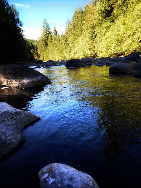 Molalla River 3 Bears Water Reflection Rocks And Water Water Over Rocks Blue Sky Trees