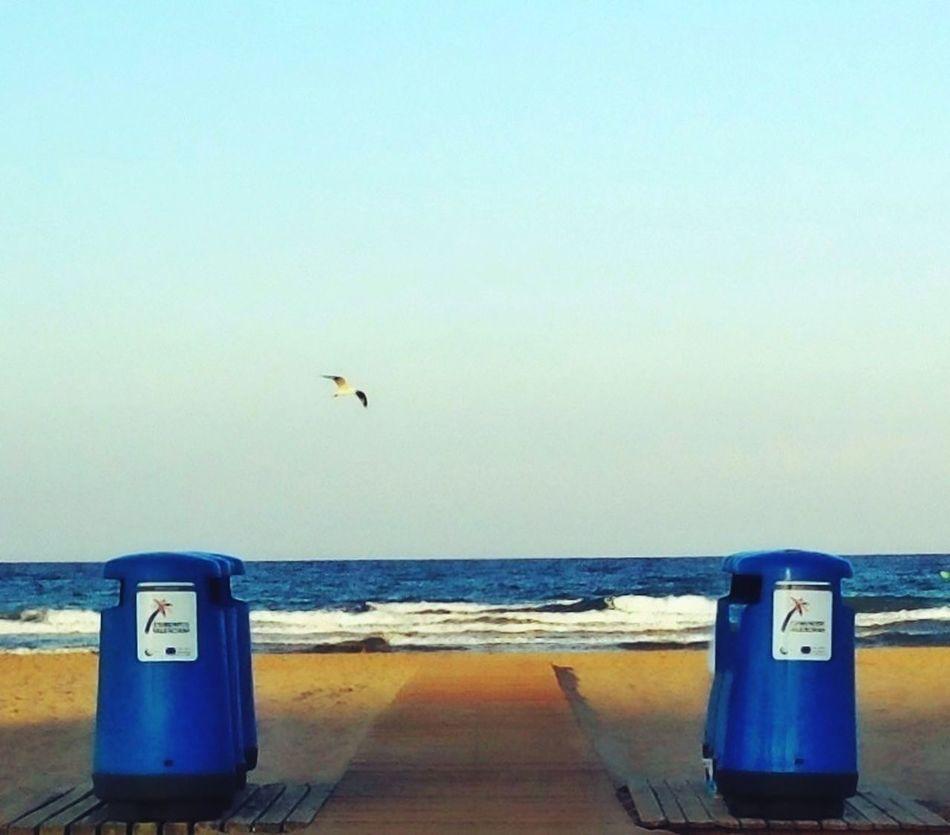Cuidemos las playas!!!