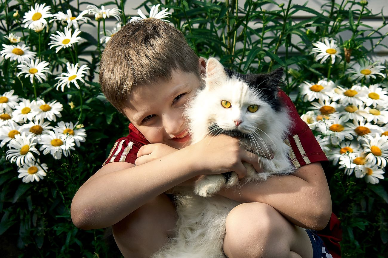 Happy Russia Love Flower Pets Child Domestic Cat Cute One Person Domestic Animals Portrait Innocence One Animal Looking At Camera Children Only Animal Themes Childhood People Smiling Embracing Relaxation Happiness Nature Portrait Photography Happy