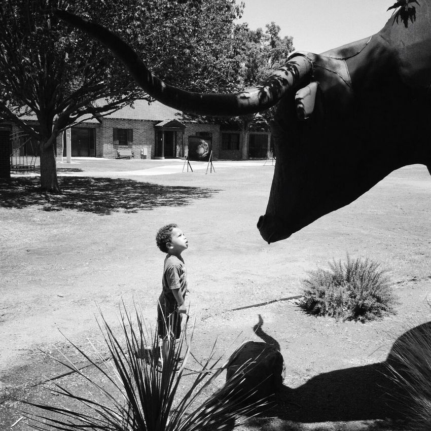 Childhood Wonder Sculpture Longhorn Museum Of The Southwest Black And White Uniqueness
