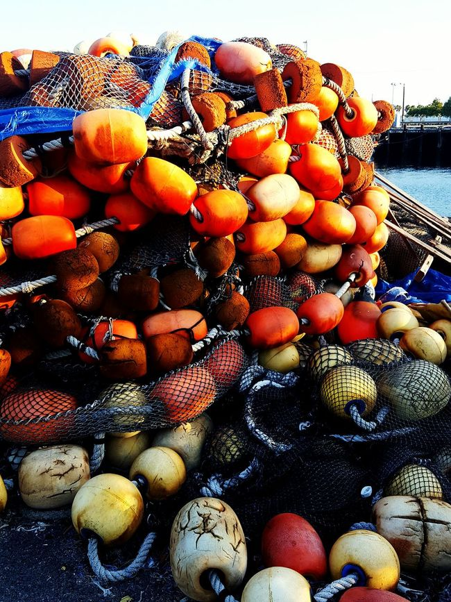Bouy Graveyard Maritime Merchantmarine Portsocall Portoflosangeles Nautical Bouy Bouy And Net Ports O' Call Perspective Fresh On Eyeem  IShootFromMyWheelchair Outdoors Outdoor Photography Eye4photography  Eyeem Market Eyeemphotography EyeEm My Perspective New Talent