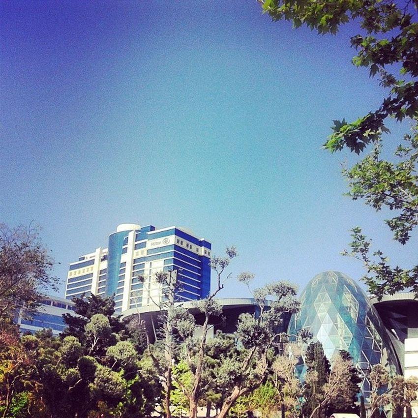 Hilton Boulevardofbrokendreams