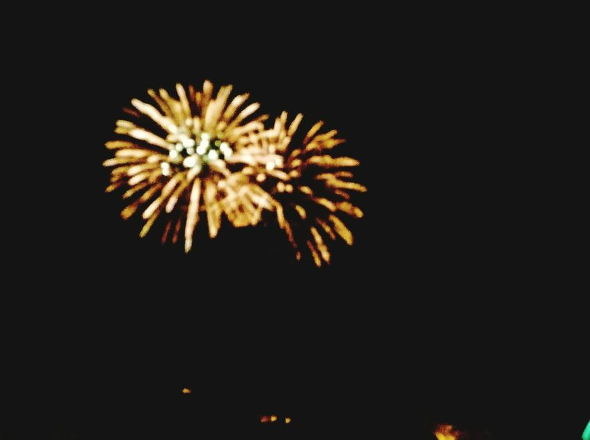 Firework Display Sky Illuminated