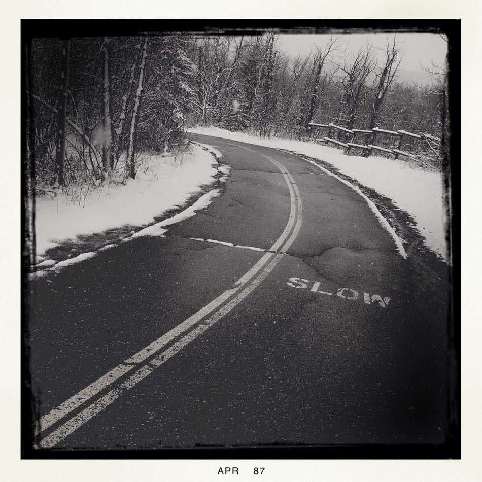 Pathway to a winter(spring) wonderland. Snow Nature Project 365 Photography Photo Of The Day Iphone6se Hipstamatic Black And White Path