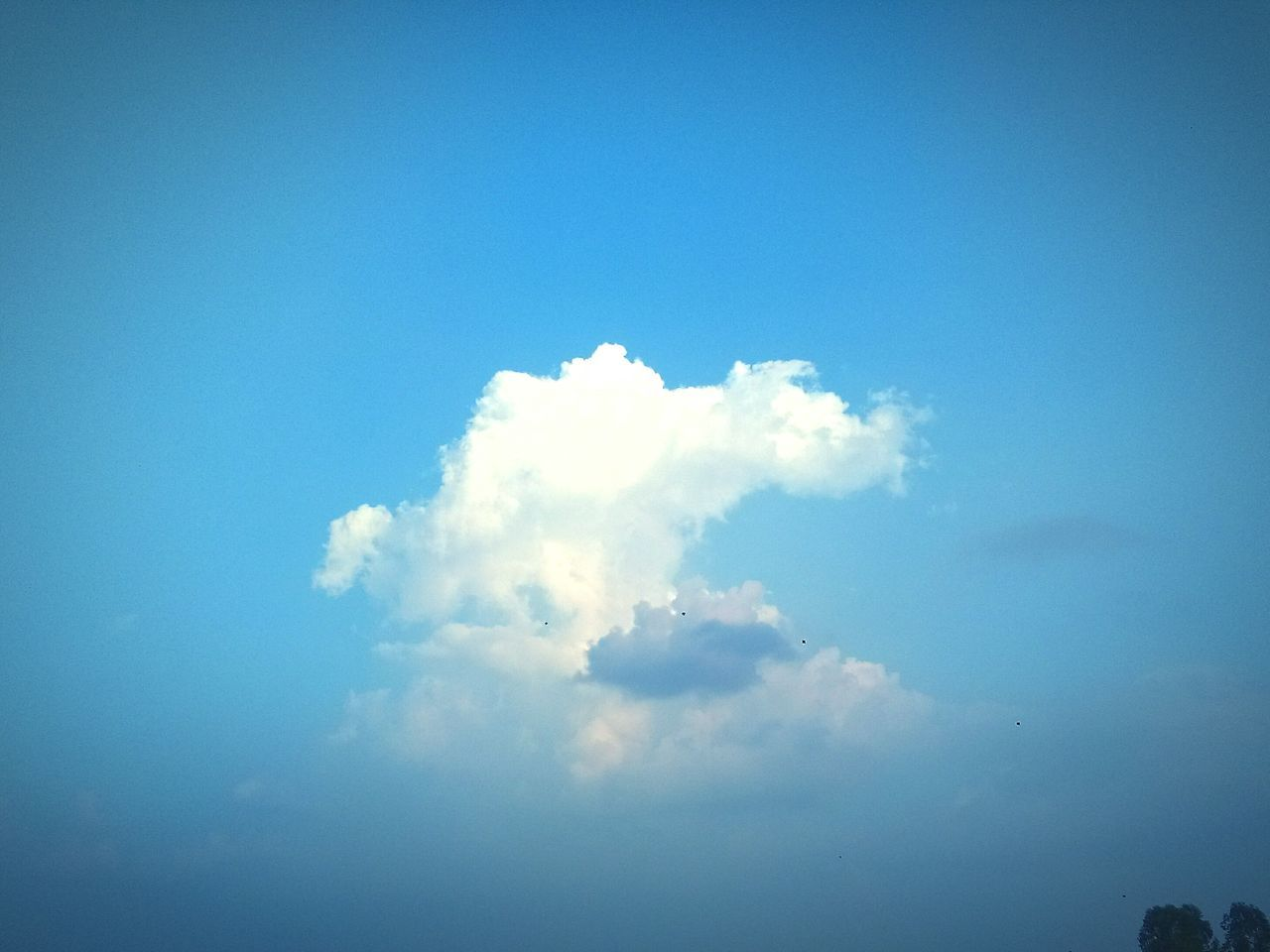 Cloud - Sky Blue Day Tranquility Nature Sky Beauty In Nature