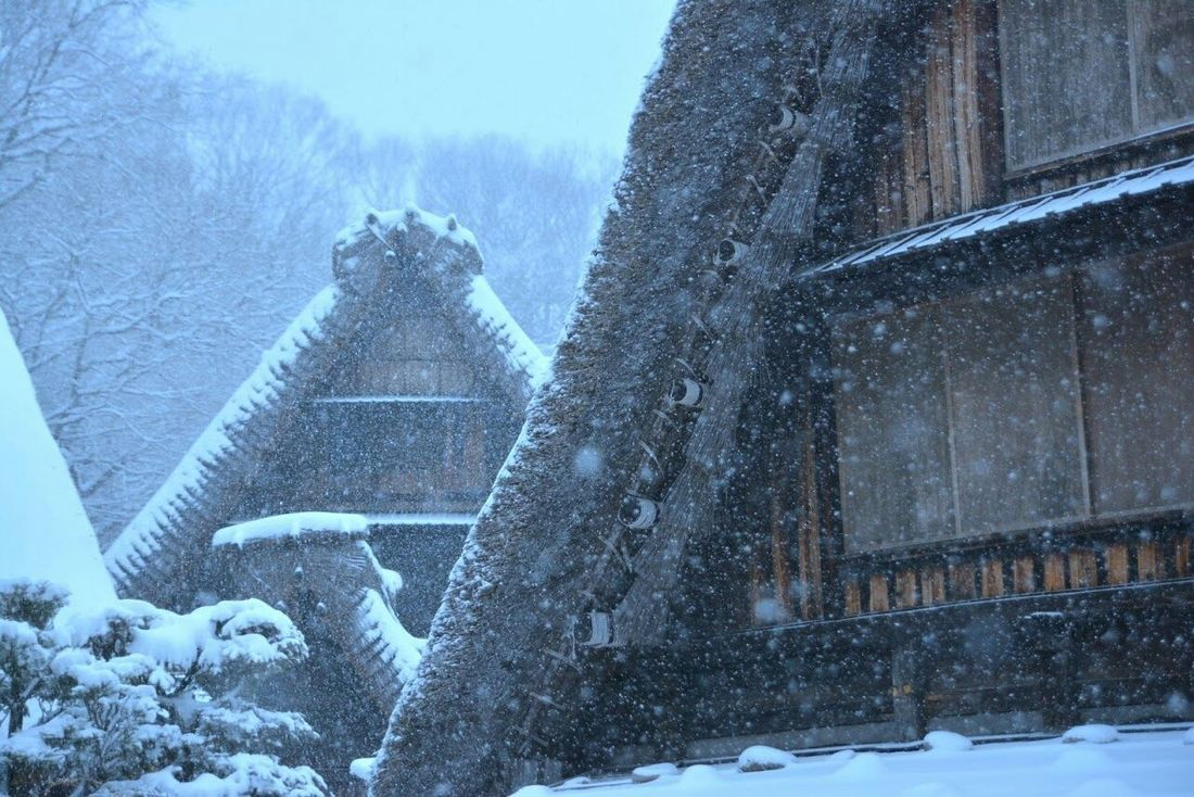 今年2月の川崎市 日本民家園 日本民家園 Kawasakicity Snow Old Buildings Architecture Wintertime