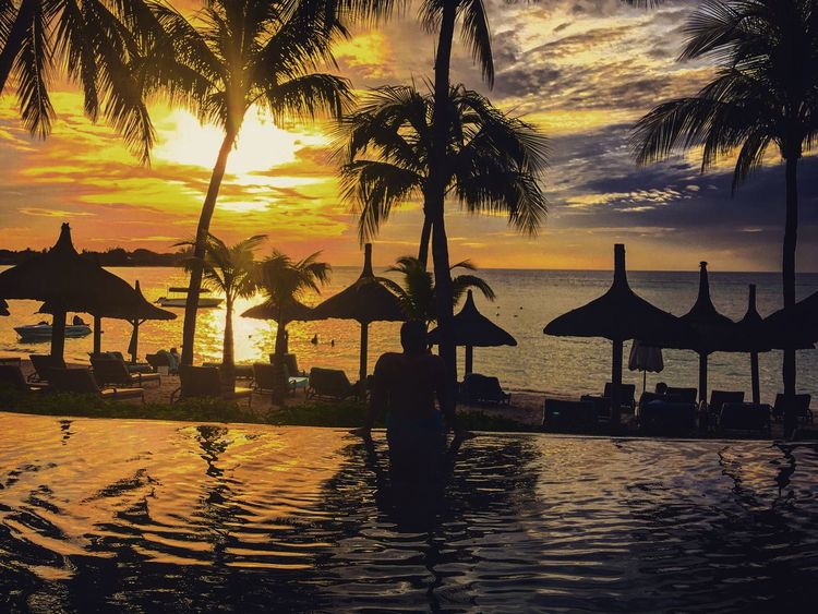 Palm Tree Water Sunset Beach Silhouette Sea Swimming Pool Tranquility Beauty In Nature Vacations Tourist Resort Scenics Outdoors Nature Travel Destinations Sky Horizon Over Water Infinity Pool Colours Luxury Hotel Lifestyles Life Is A Beach Relaxing Africa Mauritius Paint The Town Yellow Done That. The Week On EyeEm