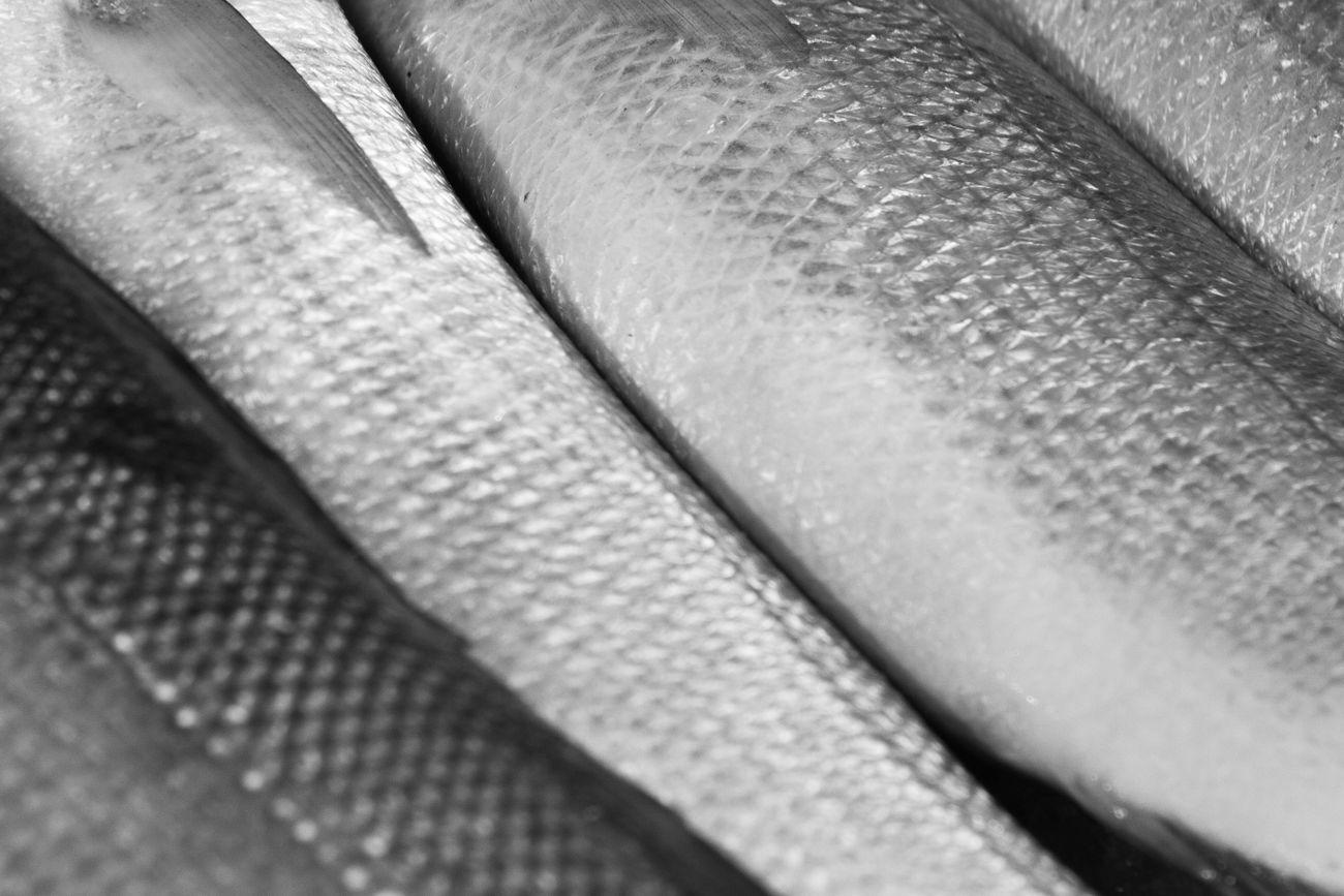 Black And White Blackandwhite Close-up Fish Fish Scales Food Freshness Full Frame Market Market Stall Maximum Closeness