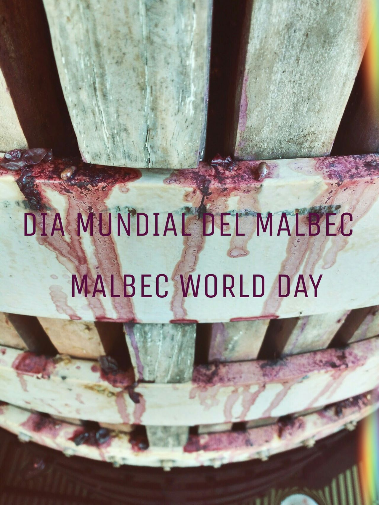 Wine Winery Wine Moments Winetasting Winelover Wine Barrels Wine Grapes Wine? Oh! Winelovers  Winemaking Wine Time Day Communication Western Script Text No People Close-up Malbec MalbecWorldDay Malbec Argentino Malbecabsoluto Enjoying Life Enjoying The Sun Enologist Enologia