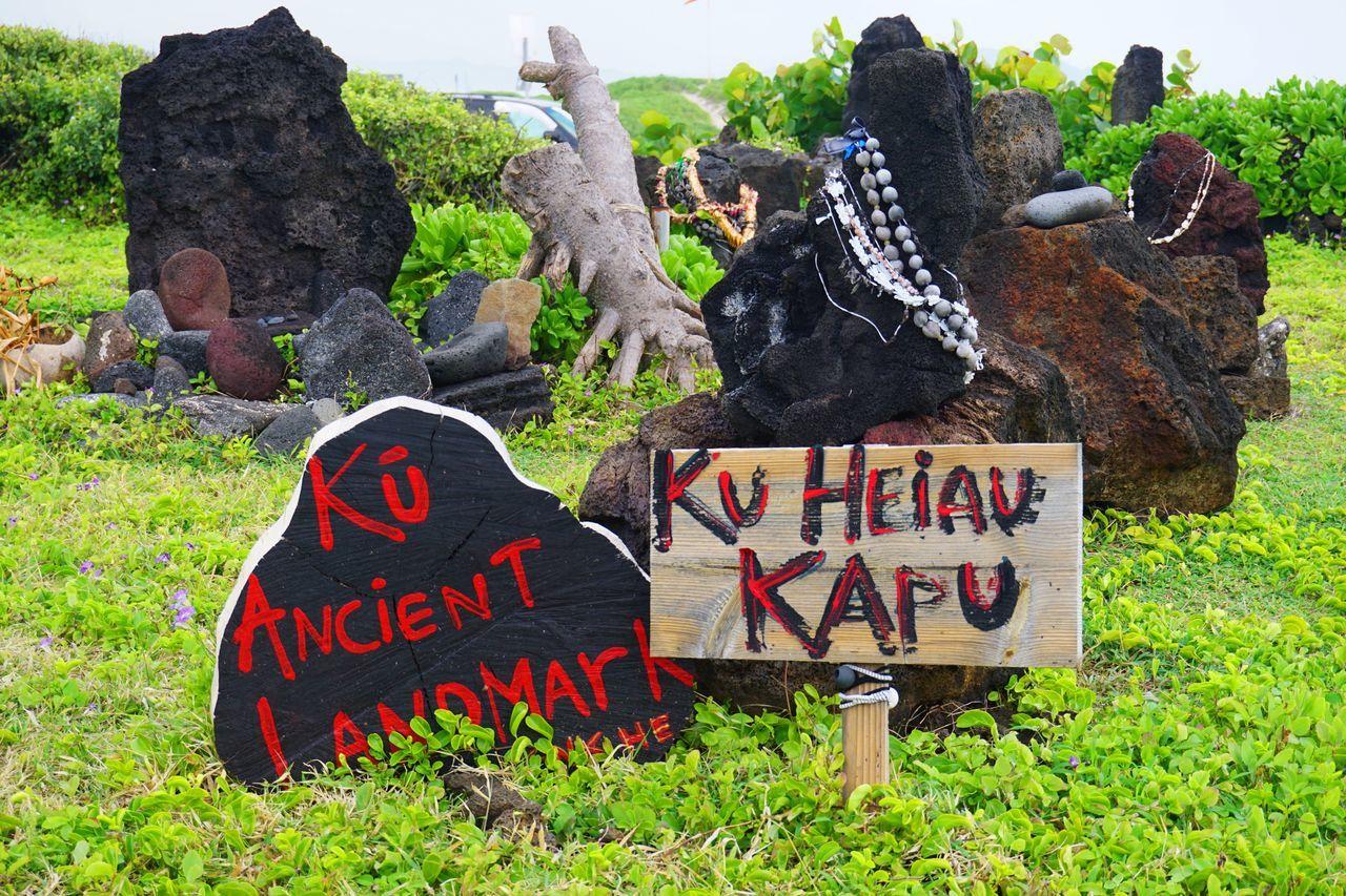 2015  Day Grass Hawaii Heiau Makapu'u Heiau Makapuu Nature O'ahu Outdoors Rock ハワイ パワースポット マカプウ マカプウヘイアウ