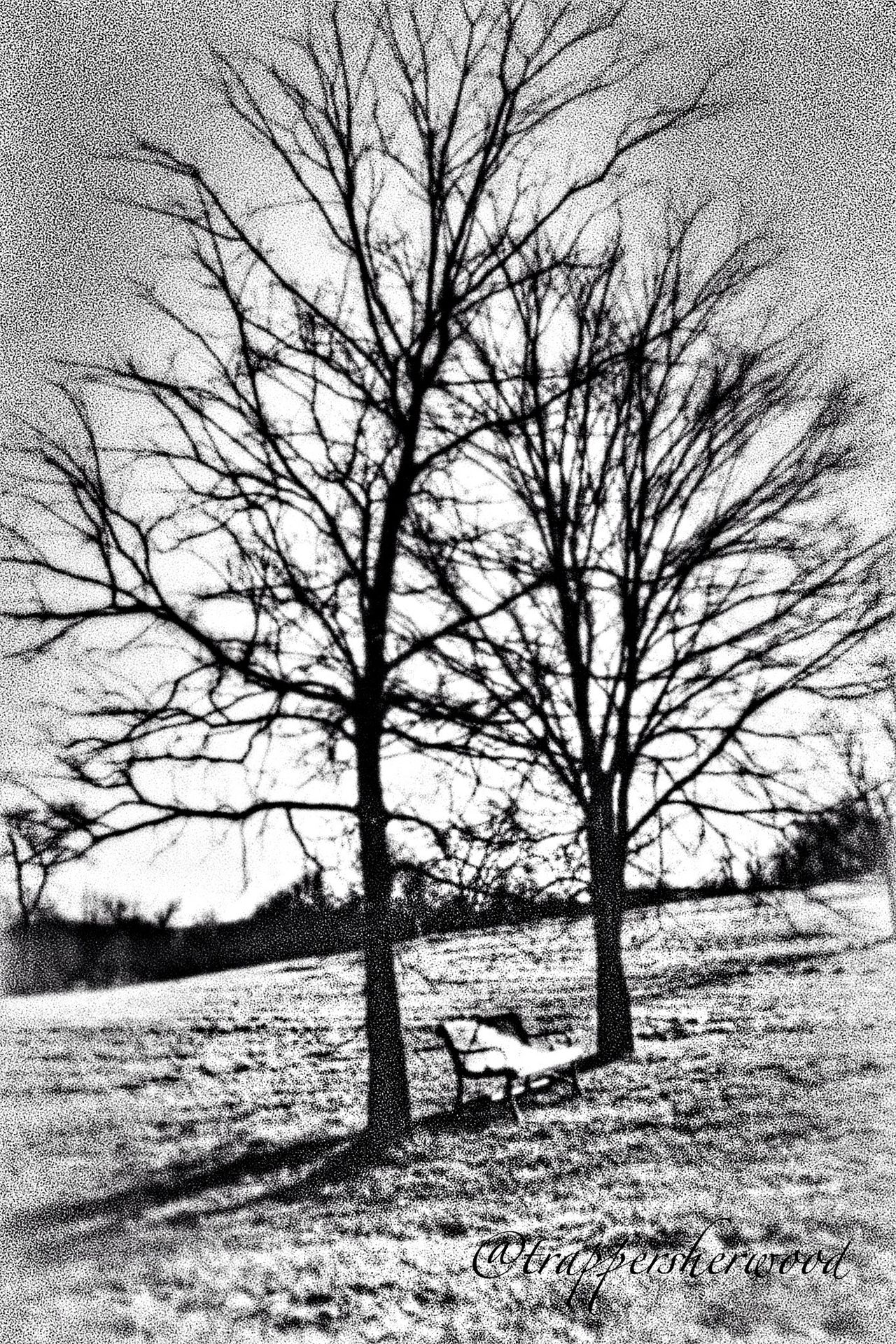 Monochrome_Monday Light And Shadows Waiting Bw_collection