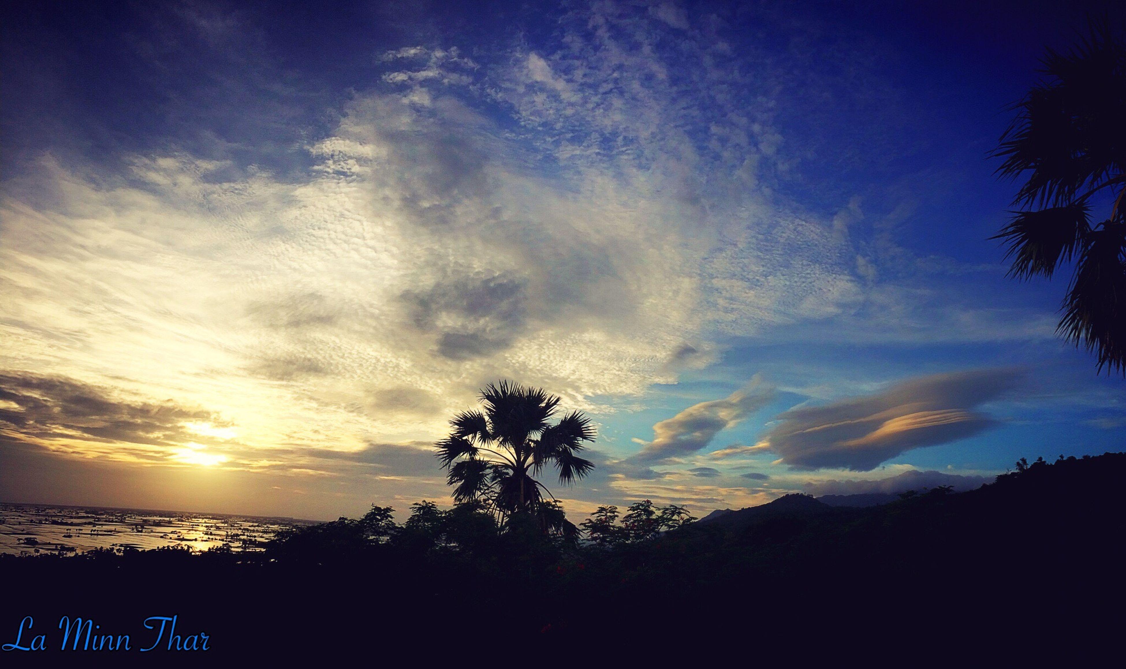 The Clouds ☁️☁️