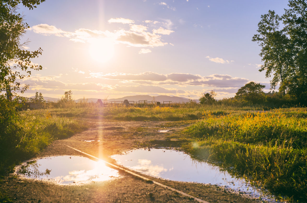 sunlight, sun, sunset, nature, water, lens flare, sunbeam, beauty in nature, sky, scenics, tranquil scene, tranquility, no people, outdoors, reflection, tree, river, grass, landscape, day