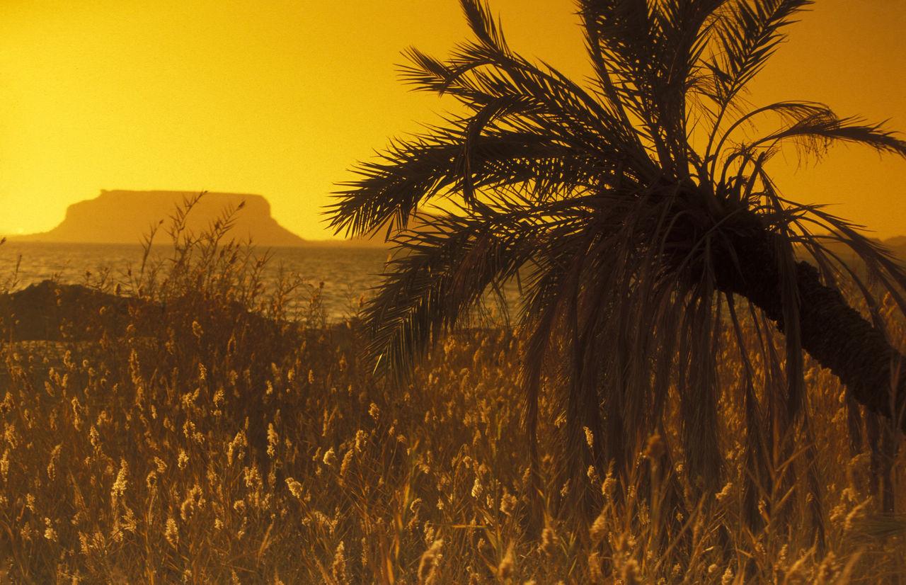 Beautiful stock photos of feuerwerk, sunset, scenics, tranquil scene, beauty in nature