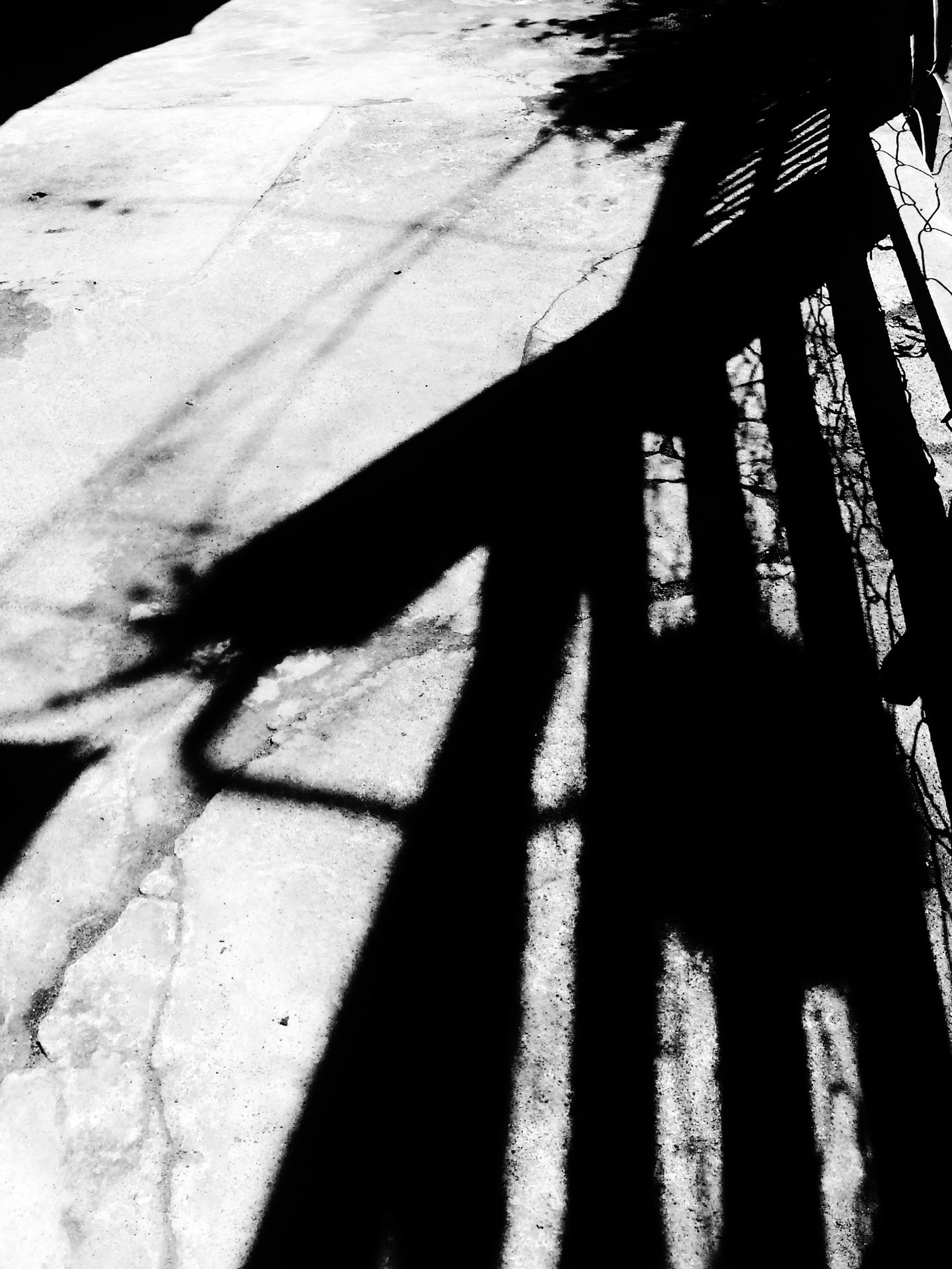shadow, sunlight, focus on shadow, high angle view, silhouette, outdoors, unrecognizable person, street, steps, day, sunny, nature, footpath, walking, textured, lifestyles, standing