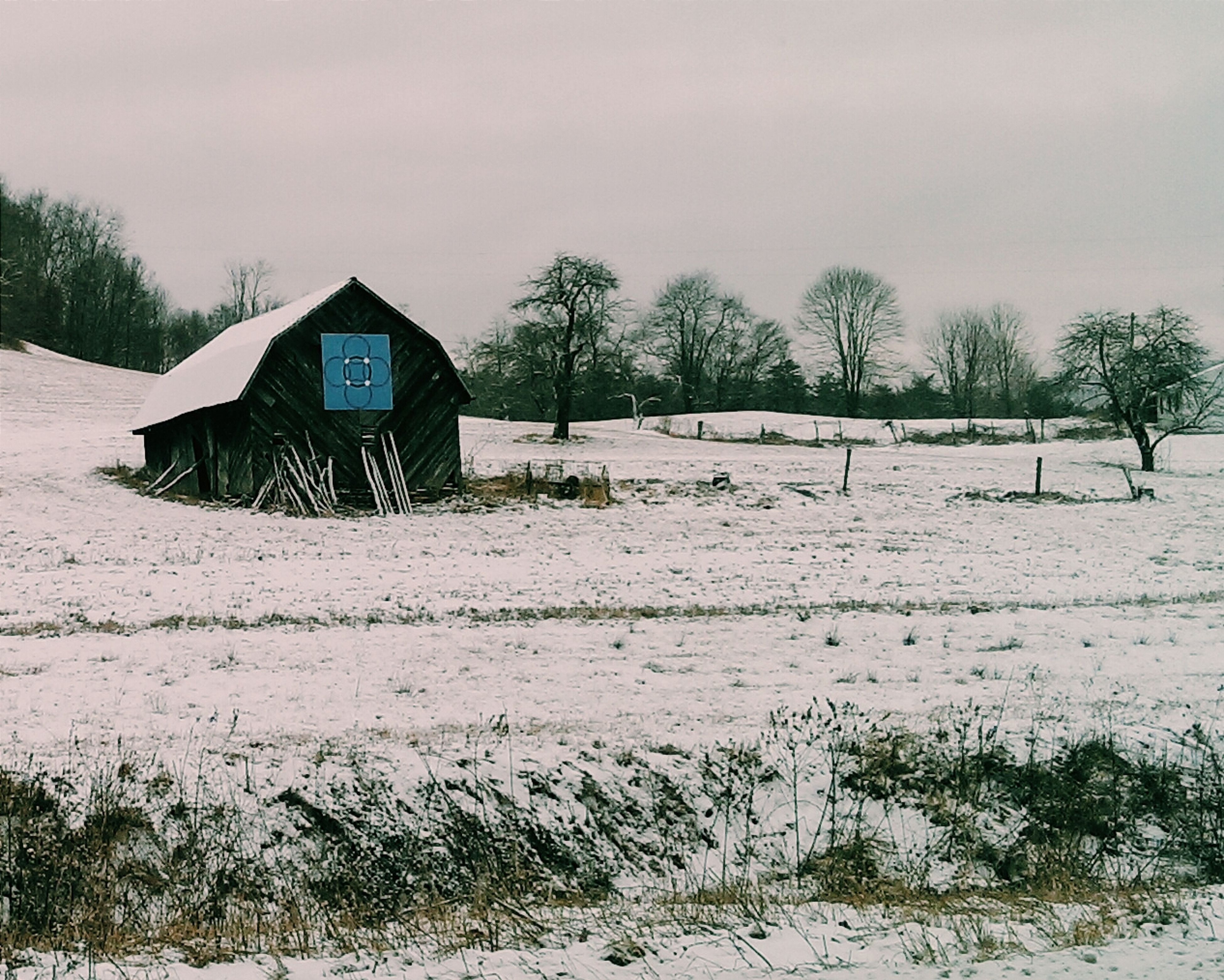 architecture, built structure, building exterior, house, sky, tree, field, snow, landscape, abandoned, winter, weather, cold temperature, nature, day, outdoors, tranquil scene, tranquility, no people, residential structure