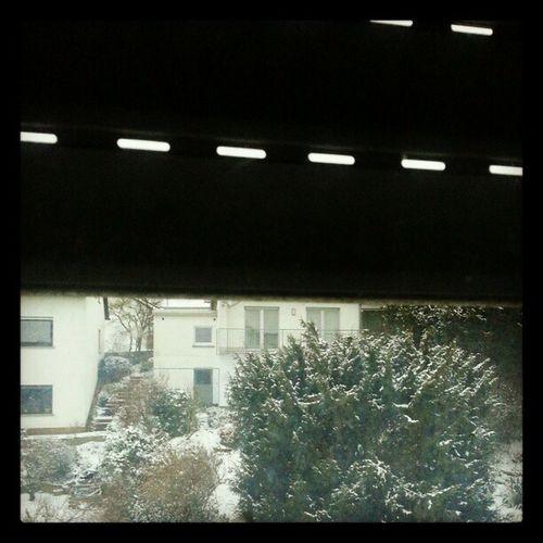 #rollladen #Schnee #kalt #fenster #winter #snow #cold #window #shutter Window Cold Schnee Fenster Kalt Shutter Rollladen Winter Snow