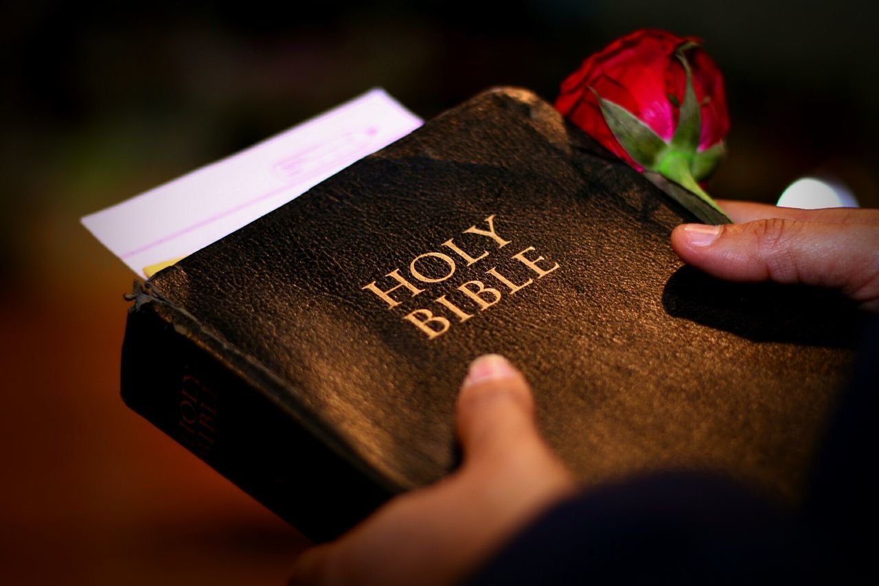 Beautiful stock photos of bible, Bible, Capital Letter, Catholicism, Christianity